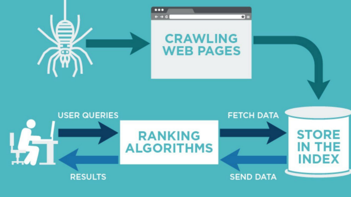 How Search Engines Work: Crawling, Indexing, and Ranking