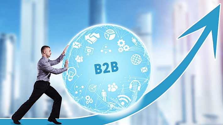 Large Vs Small: Best B2B Sales Strategy For Your Company Size